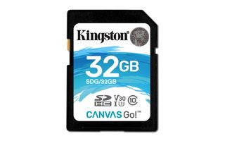 Kingston Technology Canvas Go! flashgeheugen 32 GB SDHC Klasse 10 UHS-I